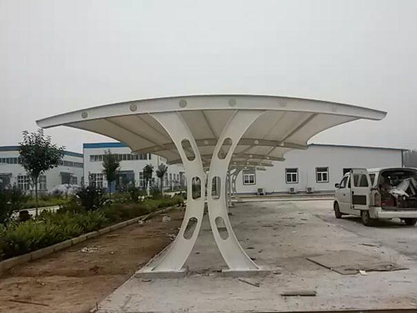 洛宁县生物制药厂膜结构车棚